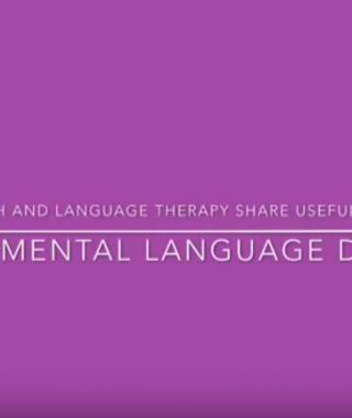 Useful Facts about DLD by Ealing Speech & Language Therapy